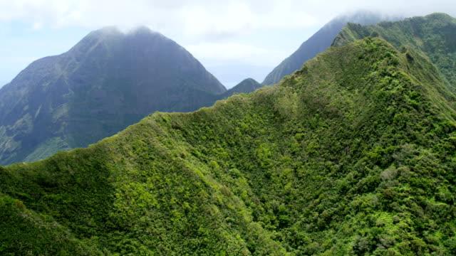 aerial coastal view of maui tropical valley rainforest - hawaii inselgruppe stock-videos und b-roll-filmmaterial