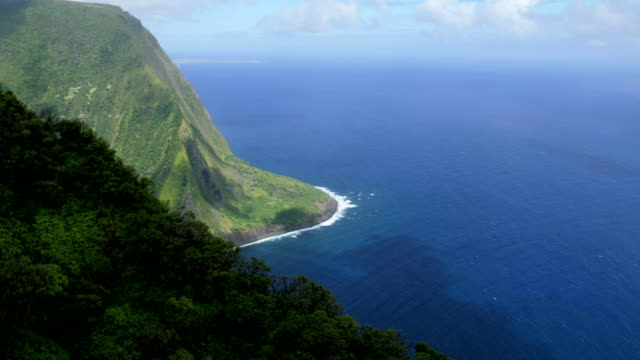 Aerial coastal view of Molokai volcanic shoreline Hawaii