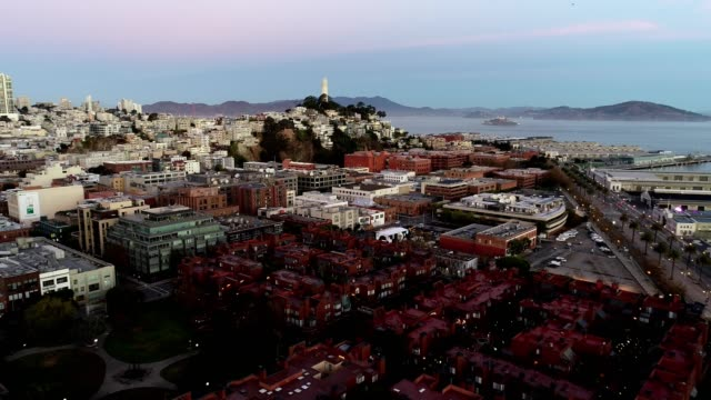 aerial coit tower in san francisco - coit tower stock videos & royalty-free footage