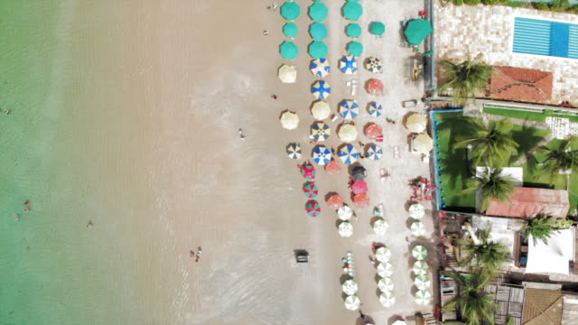 aerial: colorful beach umbrellas on beautiful beach in porto de galinhas, brazil - beach umbrella stock videos & royalty-free footage