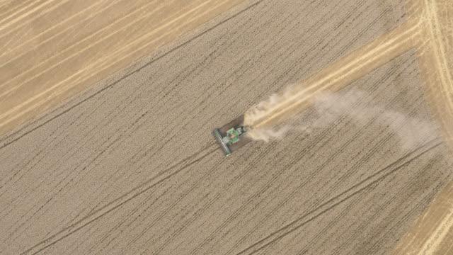 aerial combine harvester harvests wheat crop, uk - コンバイン点の映像素材/bロール
