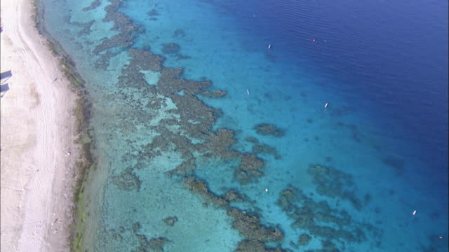 aerial coral reef in the red sea, eilat, arava, israel - red sea stock videos & royalty-free footage
