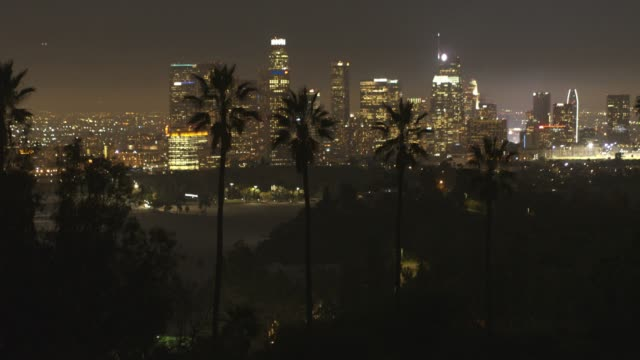 vidéos et rushes de antenne du centre de los angeles palm arbres nuit - comté de los angeles