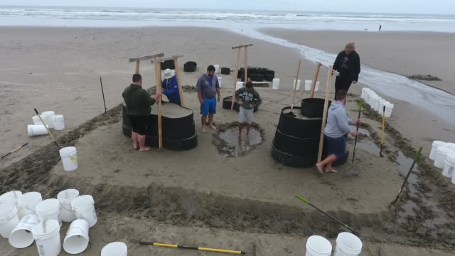 aerial drone establishing shot of oregon sandcastle contest contestants. - spielkandidat stock-videos und b-roll-filmmaterial