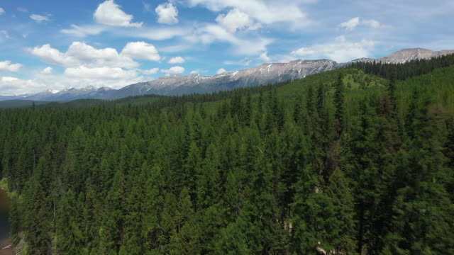 vídeos de stock e filmes b-roll de aerial drone establishing shot over glacier national park in montana - aerial or drone pov or scenics or nature or cityscape