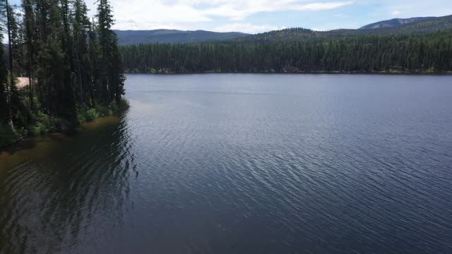 vídeos de stock e filmes b-roll de aerial drone establishing shot through the woods and out over a lake in glacier national park montana - aerial or drone pov or scenics or nature or cityscape