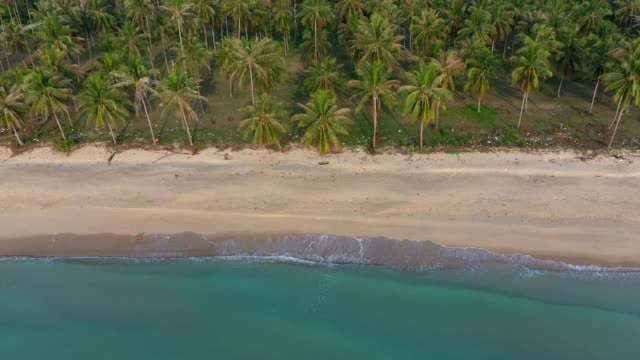 aerial drone flight over beautiful beach and coconut tree in khanom, nakhon si thammarat province, south of thailand - island stock videos & royalty-free footage