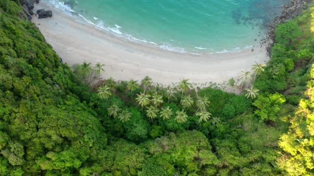 aerial drone flight over beautiful private beach and coconut tree (thong-tha-kwam) in khanom, nakhon si thammarat province, south of thailand - sunbed stock videos & royalty-free footage