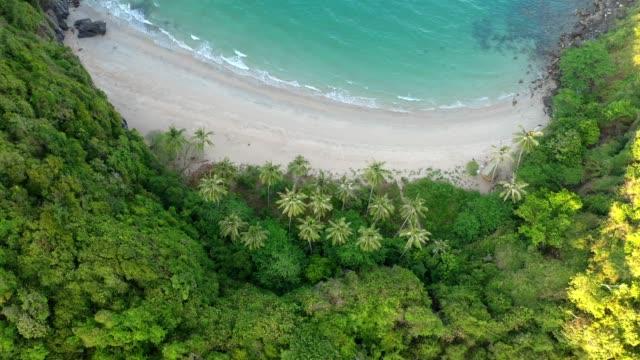 aerial drone flygning över vackra privata stranden och kokosnöt träd (thong-tha-kwam) i khanom, nakhon si thammarat provinsen, södra thailand - utebassäng bildbanksvideor och videomaterial från bakom kulisserna