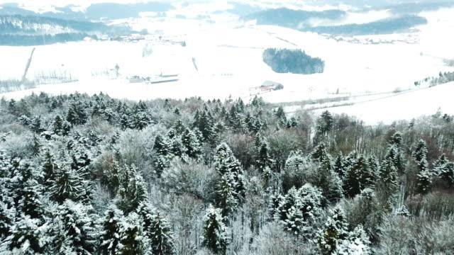 vídeos de stock, filmes e b-roll de aerial drone flight over snowy landscape - floresta da bavária