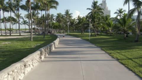 vídeos y material grabado en eventos de stock de aerial: drone flying forward towards people on footpath amidst palm trees at park during sunny day - miami, florida - miami