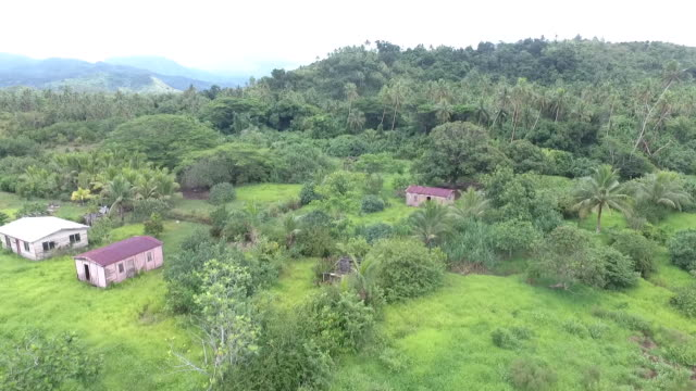 aerial drone footage of abandoned buildings among vegetation at vunidogola fiji as village has been relocated away from encroaching coastal water due... - isole del pacifico video stock e b–roll