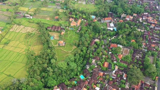 aerial drone footage of ubud, bali, indonesia - ubud district stock videos & royalty-free footage