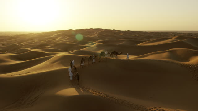 aerial drone of arab males with desert camels - peninsula stock videos and b-roll footage