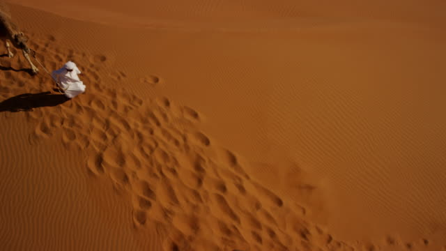 vídeos de stock e filmes b-roll de aerial drone of camel train travelling across desert - catar