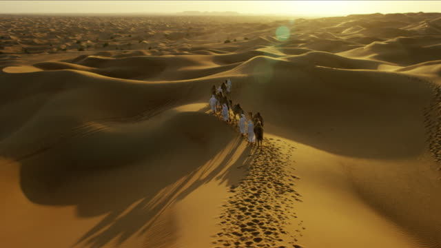 aerial drone of middle eastern male camel owners - camel train stock videos & royalty-free footage
