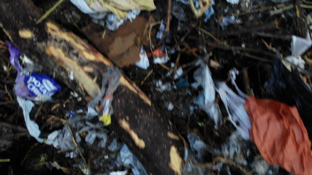 aerial drone of rubbish scattered along wood debris near river. - water pollution stock videos & royalty-free footage