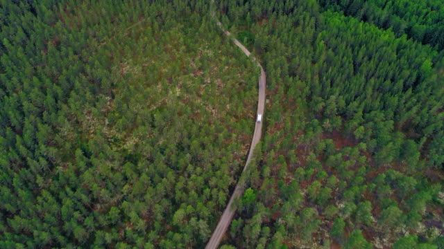 aerial: drone of van on road amidst trees in forest - smaland, sweden - 曲線点の映像素材/bロール