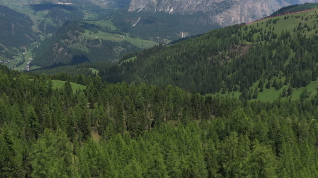 aerial drone revealing shot of forest and mountains in the italian alps - val gardena video stock e b–roll