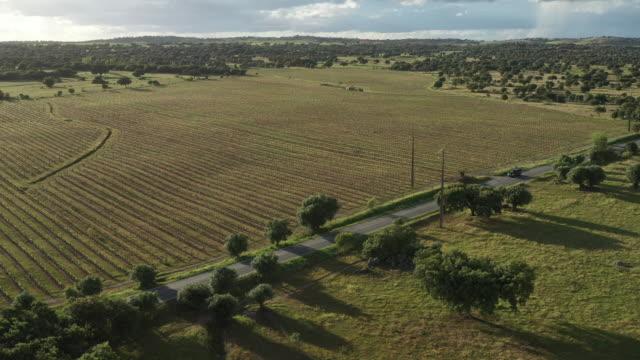 vídeos y material grabado en eventos de stock de drone aéreo disparado después de un coche en el campo cerca de lisboa - land