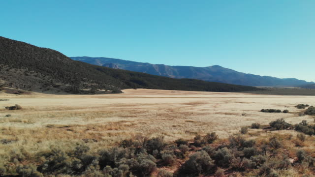 aerial drone shot of a brown desert plain at the base of mountains in utah under a clear, blue sky - utah stock videos & royalty-free footage