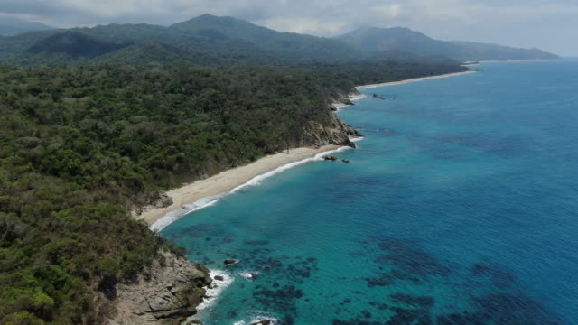 aerial drone shot of a columbian beach and forest - colombia stock videos & royalty-free footage