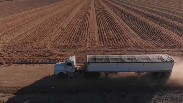 vídeos de stock e filmes b-roll de aerial drone shot of a covered grain semi-truck transporting corn at harvest next to a corn field on a farm - quinta