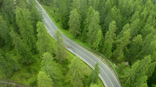 aerial drone shot of a cyclist riding a winding road in the dolomites with forrest - winding road stock videos & royalty-free footage