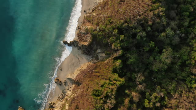 vidéos et rushes de tir aérien de drone d'une forêt et d'une plage en colombie - colombie