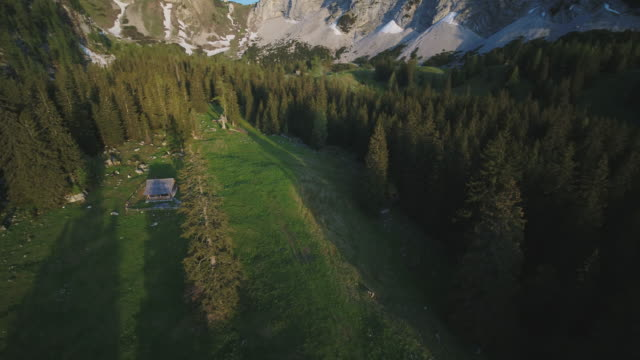 aerial drone shot of a mountain valley with conifer trees - hut stock videos & royalty-free footage