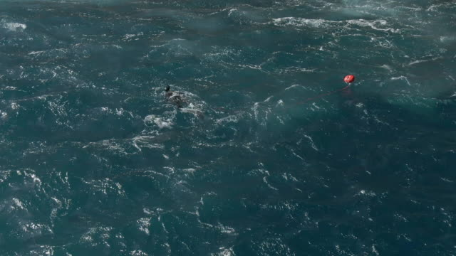 aerial drone shot of a scuba diver pulling a buoy - buoy stock videos & royalty-free footage