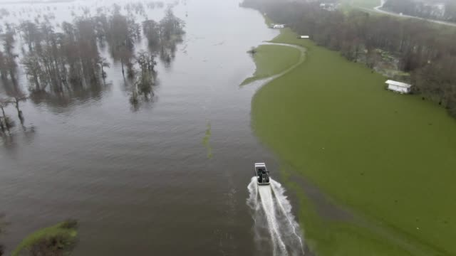 aerial drone shot of an airboat speeding by floating salvinia (fern) in the atchafalaya river basin swamp in southern louisiana under an overcast sky - louisiana stock videos & royalty-free footage