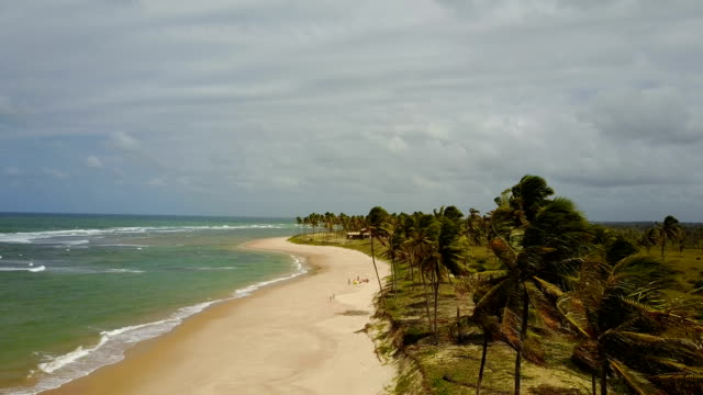 tiro de drone aérea de litoral do Brasil, estado da Bahia