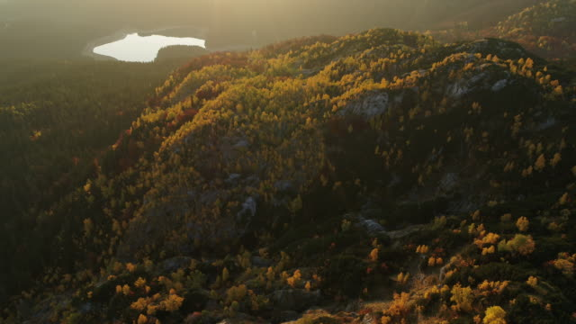 aerial drone shot of colored trees and lake in durmitor national park at sunset - montenegro stock videos & royalty-free footage