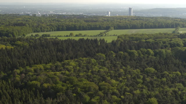 aerial drone shot of forest with city in the distance near german nature preserve - 1985 stock videos & royalty-free footage