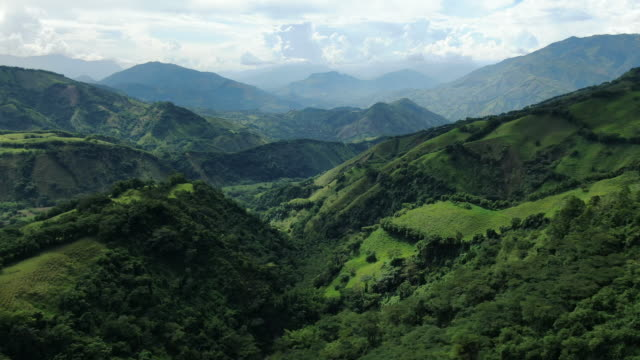 aerial drone shot of lush green colombian wilderness - ethereal stock videos & royalty-free footage