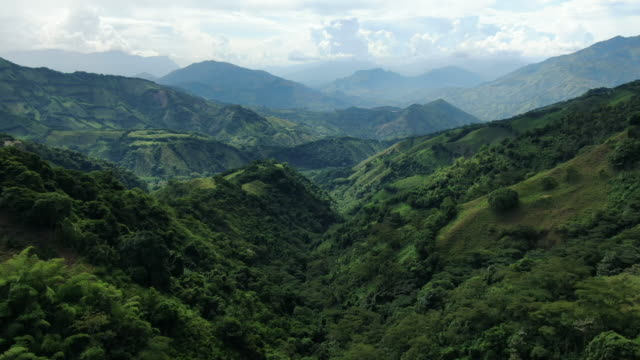 aerial drone shot of lush green colombian wilderness - wilderness stock videos & royalty-free footage