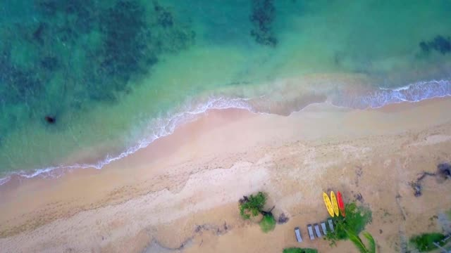 vídeos de stock, filmes e b-roll de vídeo de zangão aéreo 4k de praia tropical no caribe - mar do caribe