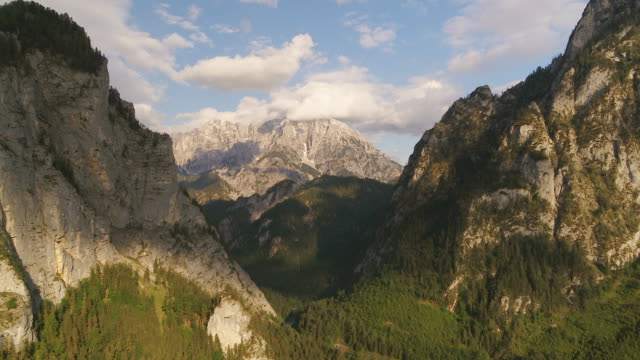 aerial drone view at sunset of peaks surrounded by clouds with forest below - snowcapped mountain stock videos & royalty-free footage