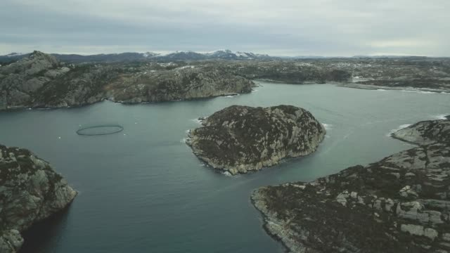 aerial drone view: fish farming in norway - salmon animal stock videos & royalty-free footage
