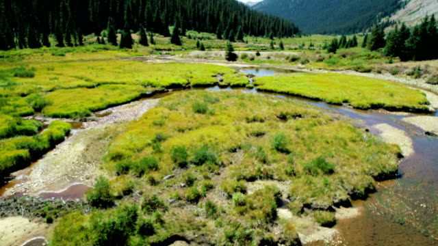 aerial drone view flying over winding river and streams flowing along independence pass near aspen , colorado - aspen tree stock videos & royalty-free footage