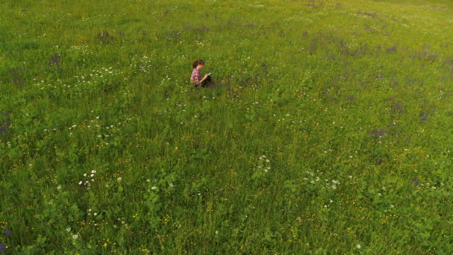 aerial drone view from above of woman sitting in field taking notes and examining nature at sunset - top capo di vestiario video stock e b–roll