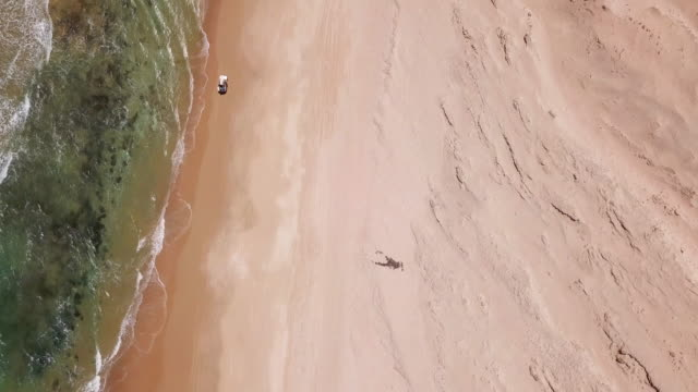 aerial drone view of a 4x4 jeep car vehicle driving on the beach surf trip. - climate stock videos and b-roll footage