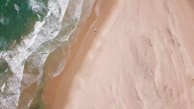 vídeos de stock e filmes b-roll de aerial drone view of a 4x4 jeep car vehicle driving on the beach surf trip. - jeep