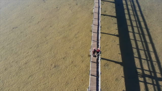 aerial drone view of a couple walking on a wooden deck walkway bridge over a river lake. - slow motion - recreational pursuit stock videos & royalty-free footage