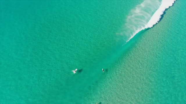 aerial drone view of a group of surfers sitting and waiting for waves in clear green ocean water. - slow motion - water sport stock videos & royalty-free footage