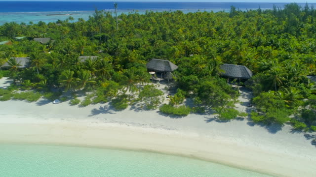 aerial drone view of a luxury resort hotel on a scenic tropical island in french polynesia. - south pacific ocean video stock e b–roll