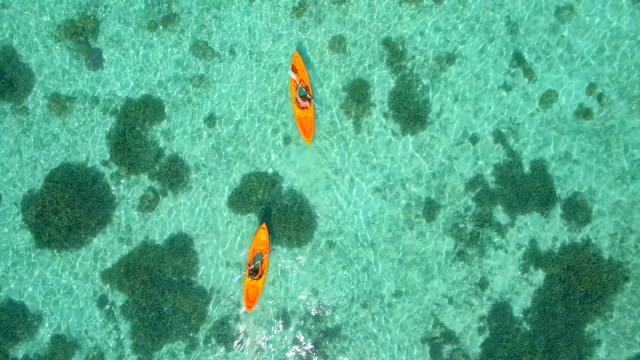 aerial drone view of a man and woman couple kayaking around a tropical island. - tropischer baum stock-videos und b-roll-filmmaterial