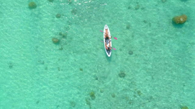 vídeos de stock e filmes b-roll de aerial drone view of a man and woman couple kayaking on a tandem kayak in scenic tropical islands. - veículo aquático