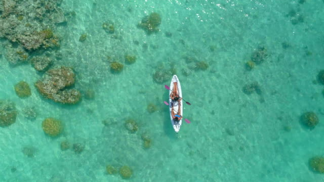 aerial drone view of a man and woman couple kayaking on a tandem kayak in scenic tropical islands. - canoe stock videos & royalty-free footage